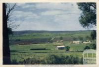 Mossiface Valley, Typical of Bairnsdale District Scenery