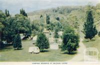 Camping reserve at Buchan Caves