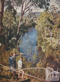 Yarra River, Warrandyte, 1954