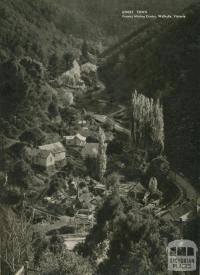 Ghost town, former mining centre, Walhalla, 1954
