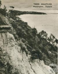 Treed coastline, Mornington, 1954