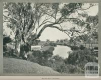 Rowing Club, Mitchell River, Bairnsdale, 1918