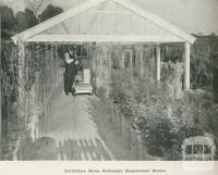 Pot-culture house, Rutherglen Experimental Station, 1918
