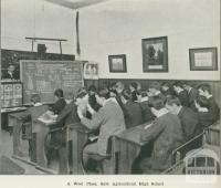 A wool class, Sale Agricultural High School, 1918