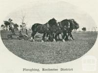 Ploughing, Rochester district, 1918