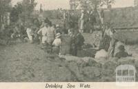 Donnybrook Spa Mineral Springs, 1947-48