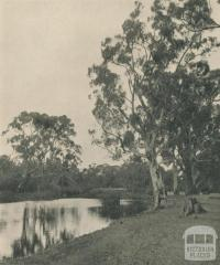 On the Glenelg River, 1943