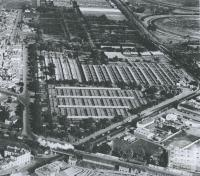 Newmarket Saleyards, Kensington, 1953