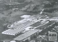 British Nylon Spinners and Fibremakers Factories, Bayswater North