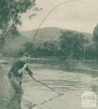 Trout Fishing, Goulburn River, Alexandra
