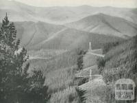 Pine Forest and S.E.C. Powerlines to Melbourne, Bright Shire, c1960
