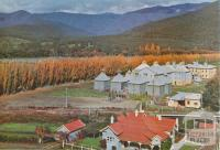 Hop Oasthouses and Tobacco Kilns, Panlook's, Eurobin, c1960