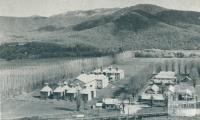 Hop Kilns, Eurobin, 1951