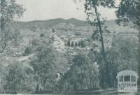 View of Myrtleford, 1951