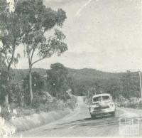 Road to the Upper Yarra Dam, 1954