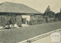 A private garden, Yallourn, 1961