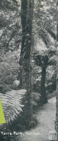Tarra Park, Yarram, 1947
