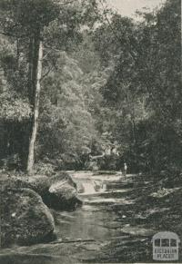 The Artists Glen, Lorne, 1910
