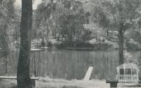 Swimming Pool, Shaw's Lake, 1959