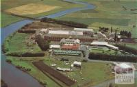 Milk Factory, Dennington, 1958