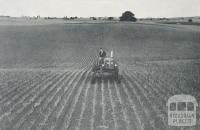 Onion Fields, Alvie, 1958