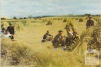 Hay harvesting, Romsey, 1958