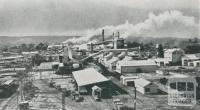 Paper pulp and kraft mill, Maryvale, 1955