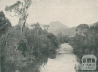 Buffalo River, Myrtleford, 1911