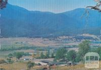 Horseriding, a popular pastime around Mount Beauty