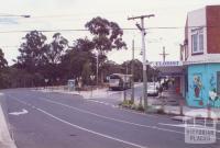 Wattle Park, 1999