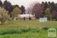 Dean Primary School, 2000
