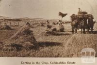 Carting in the crop, Colbinabbin Estate, 1911