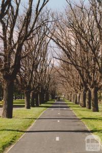 Elm walk, Bridge and Raglan Streets, Port Melbourne railway reserve, 2004