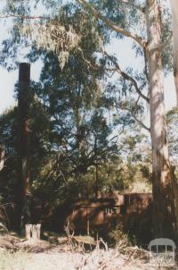 Old timber mill, Goongerah, 2010