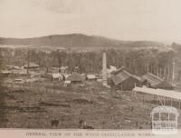 Cuming's wood distillation works, Yarra Junction, 1908