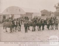 Horses and stable accommodation, Kiata, 1912