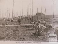 Colonists cutting firewood, Leongatha, 1912