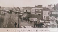 Loading artificial manure, Yarraville station, 1913
