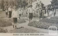 Ballendella plots, 1939