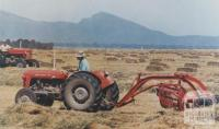 Haymaking, Willaura, 1965