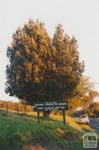 City of Knox Historic Avenue of Honour, 2010
