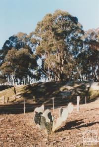 Near mine site, Betley, 2010