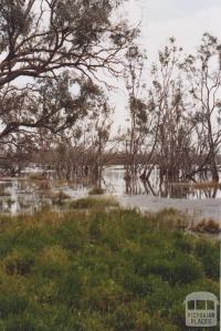 Lake Lalbert, 2010