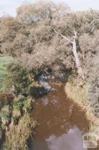 Woady Yaloak Creek, Pitfield, 2010
