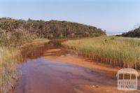 Thurra River, 2011
