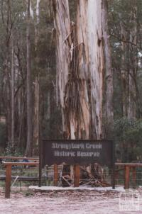 Stringybark Creek, Tolmie, 2012