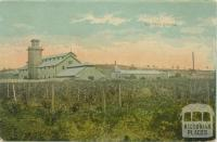Chateau Dookie, 1908