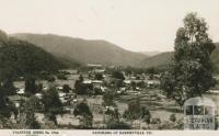Panorama of Harrietville