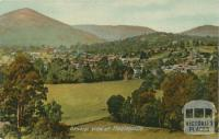 General view of Healesville
