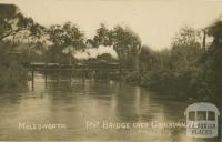 Railway Bridge over Goulburn River, Molesworth
